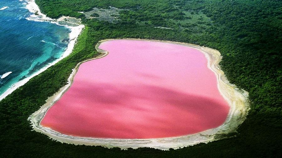 Avustralya pembe göl nerede
