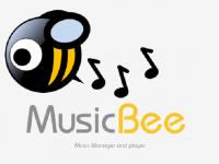 müzik programı