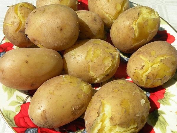 patates diyet